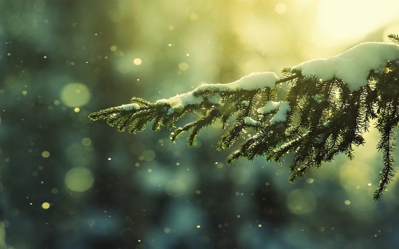 christmas-wallpaper-tumblr-49877036.jpg